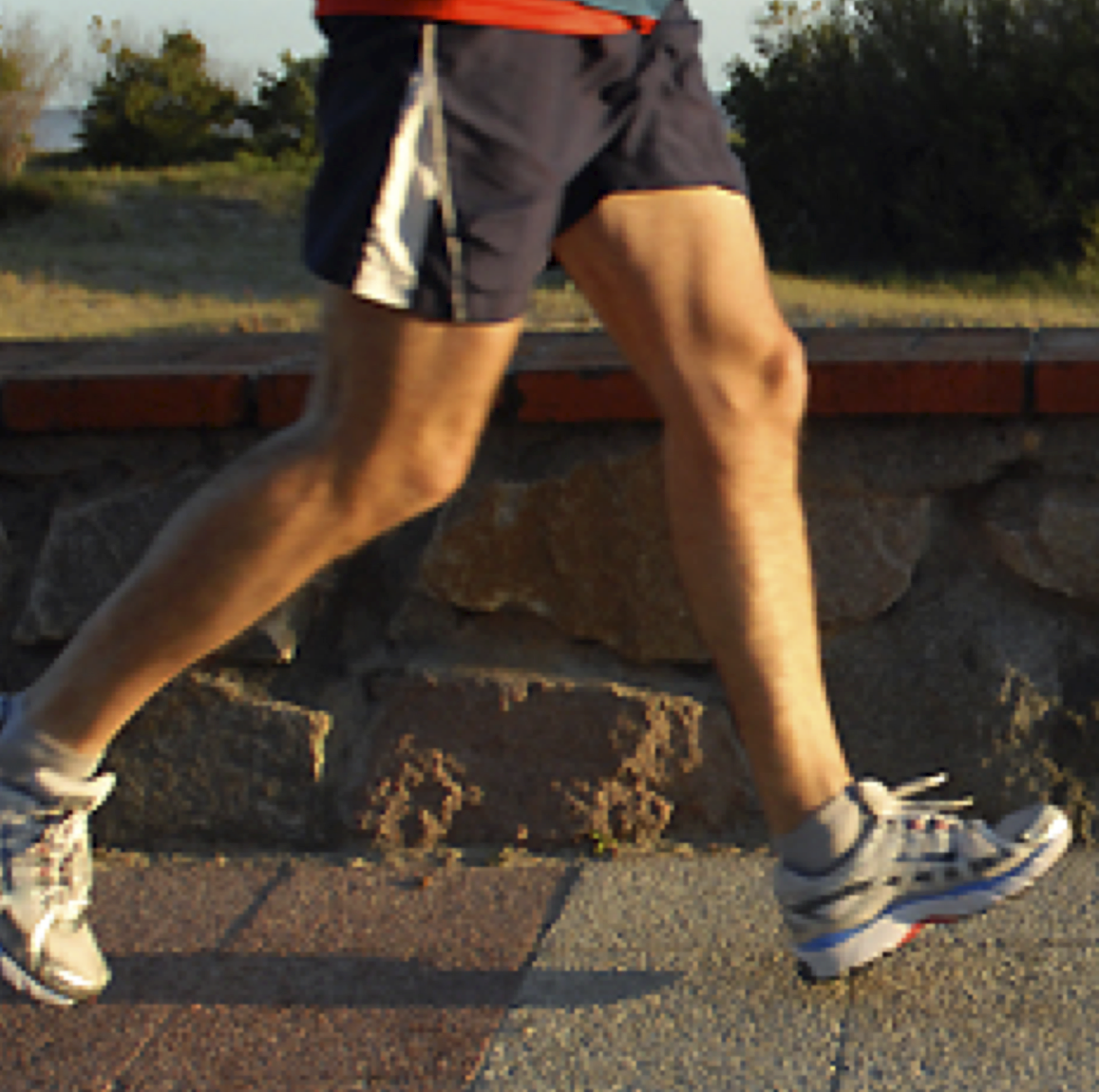 physicalactivity Compared to activity levels nationwide, Northwest Indiana area adults are ...